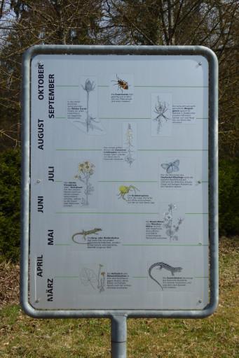 Naturreservat Ägerten