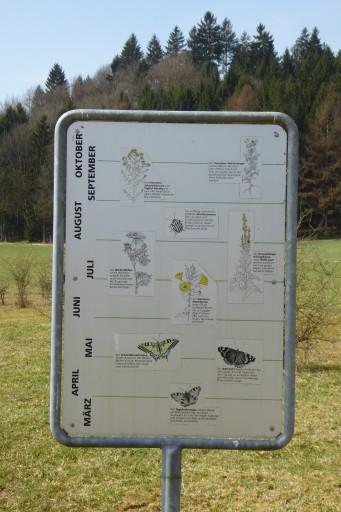 Infotafel 1: Pflanzen- und Tierwelt nach Monat