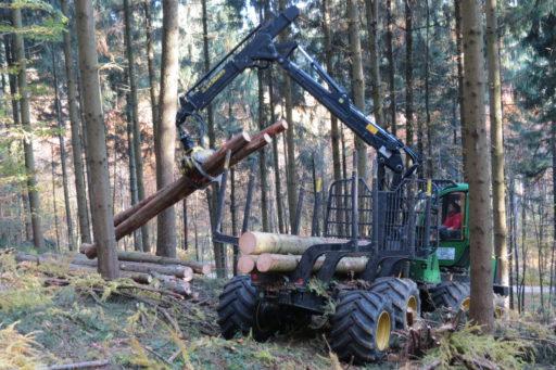 Holztransport mit dem Forwarder