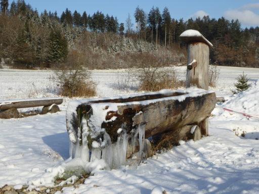 Vereisender Brunnen
