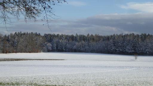Schneebedeckte Ägerten