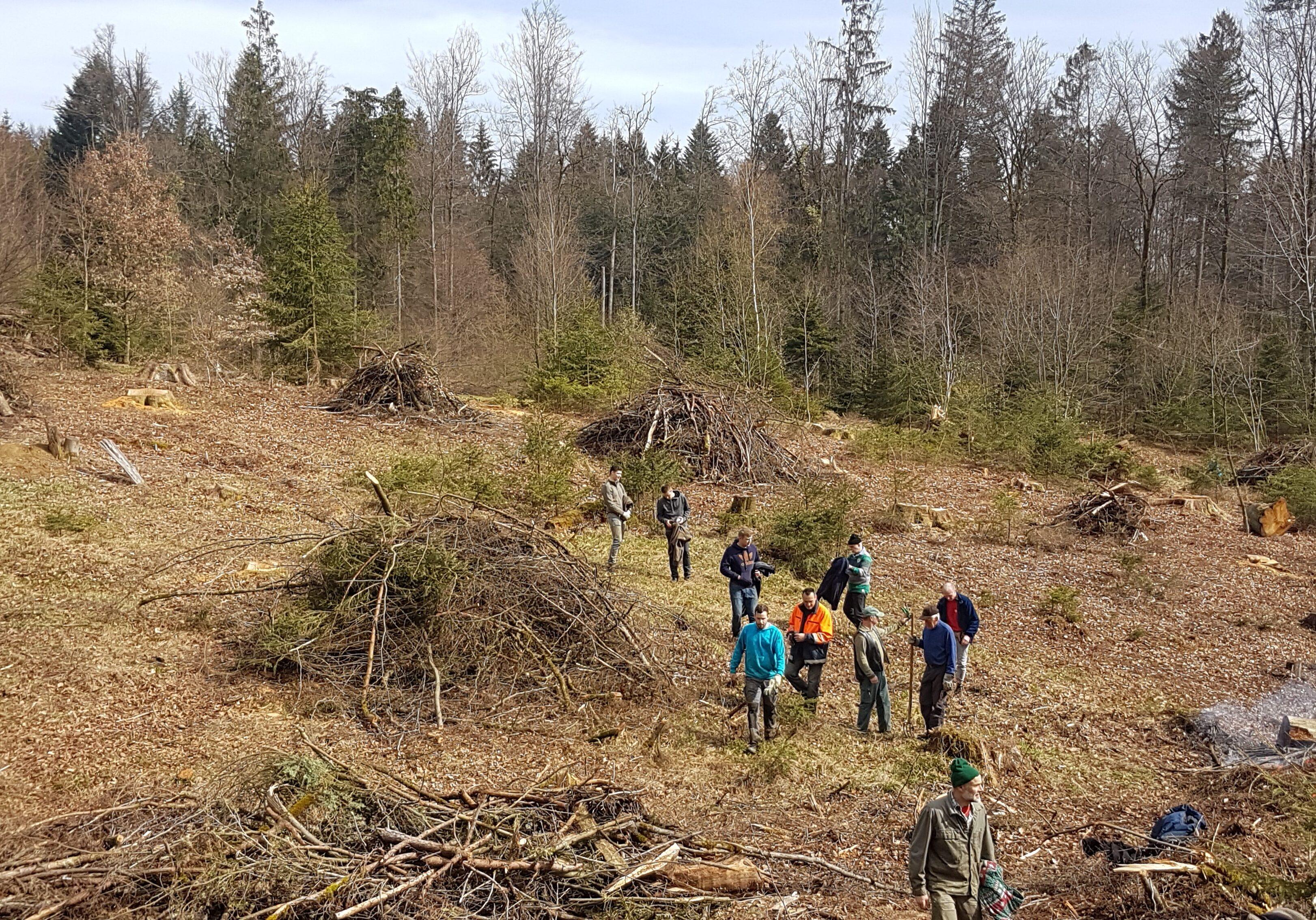 Waldarbeitstag 2019
